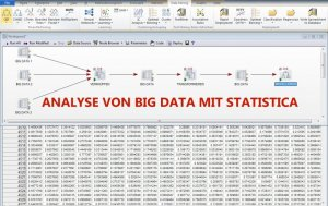 808-statistica-als-strong-performer-in-big-data-analysen-82-1358783866